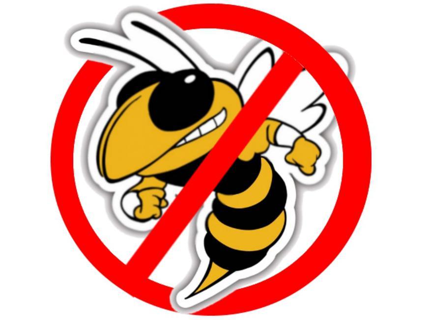 Каникулы с Бонифацием: опасные насекомые