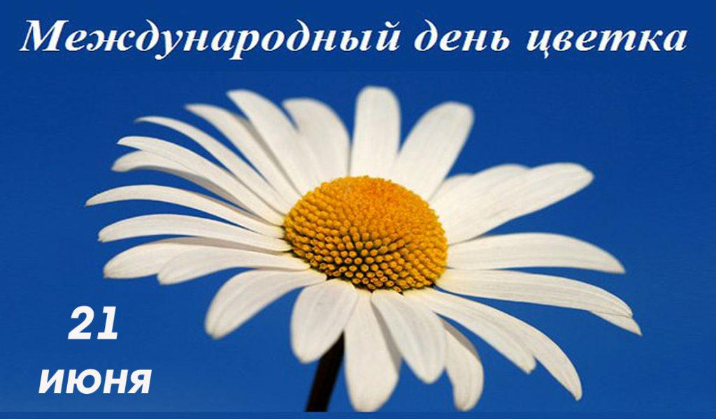 «Живет повсюду красота» к Международному дню цветка 0+